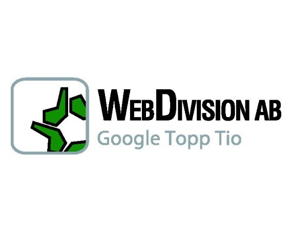 Webdivision Dominance SEO konsult