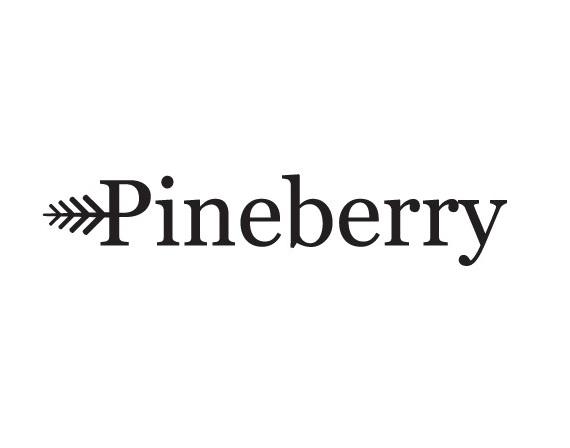 pineberry SEO konsult